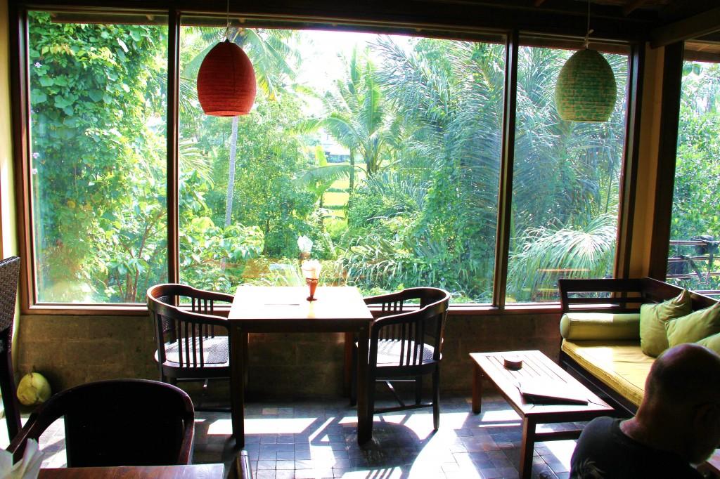Pas mal, non ? Mon gym avec café vue sur la forêt tropicale.