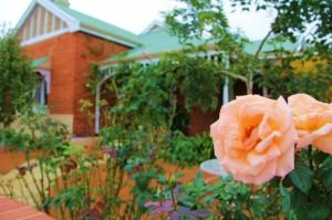 Architecture typique et rosiers odorants