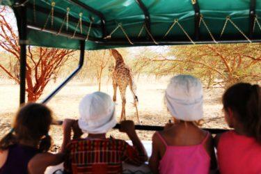 Safari en famille au Sénégal