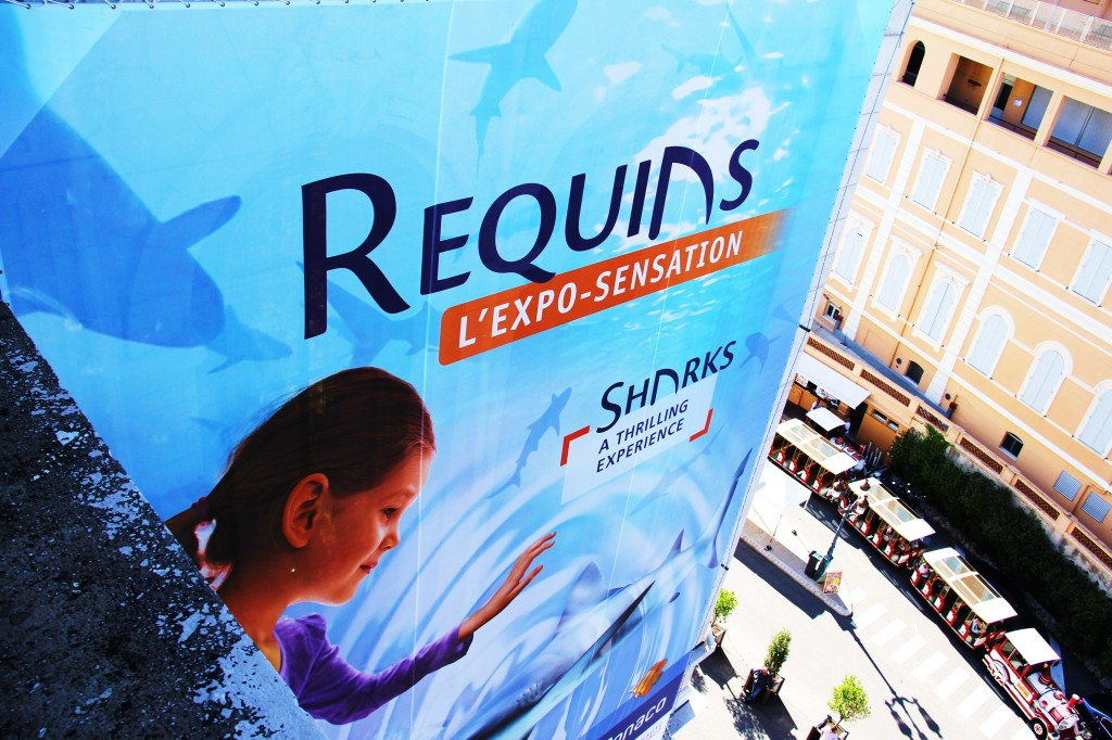 Plusieurs variétés de requins se retrouvent au Musée océanographique de Monaco. En bas à droite, le train touristique Azur Express et sa promenade commentée.