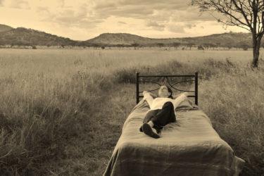 Et je suis devenue guide de safari. Quel est VOTRE évasion de vous-même?