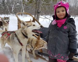 Excursion en chiens de traîneau