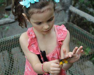 Laetie avec un papillon